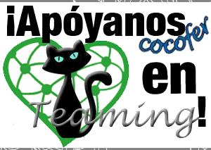 Visita nuestro Teaming