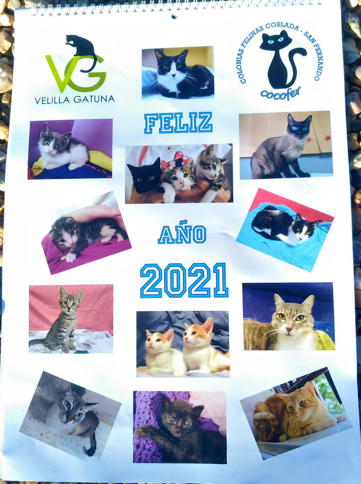 Calendarios 2021